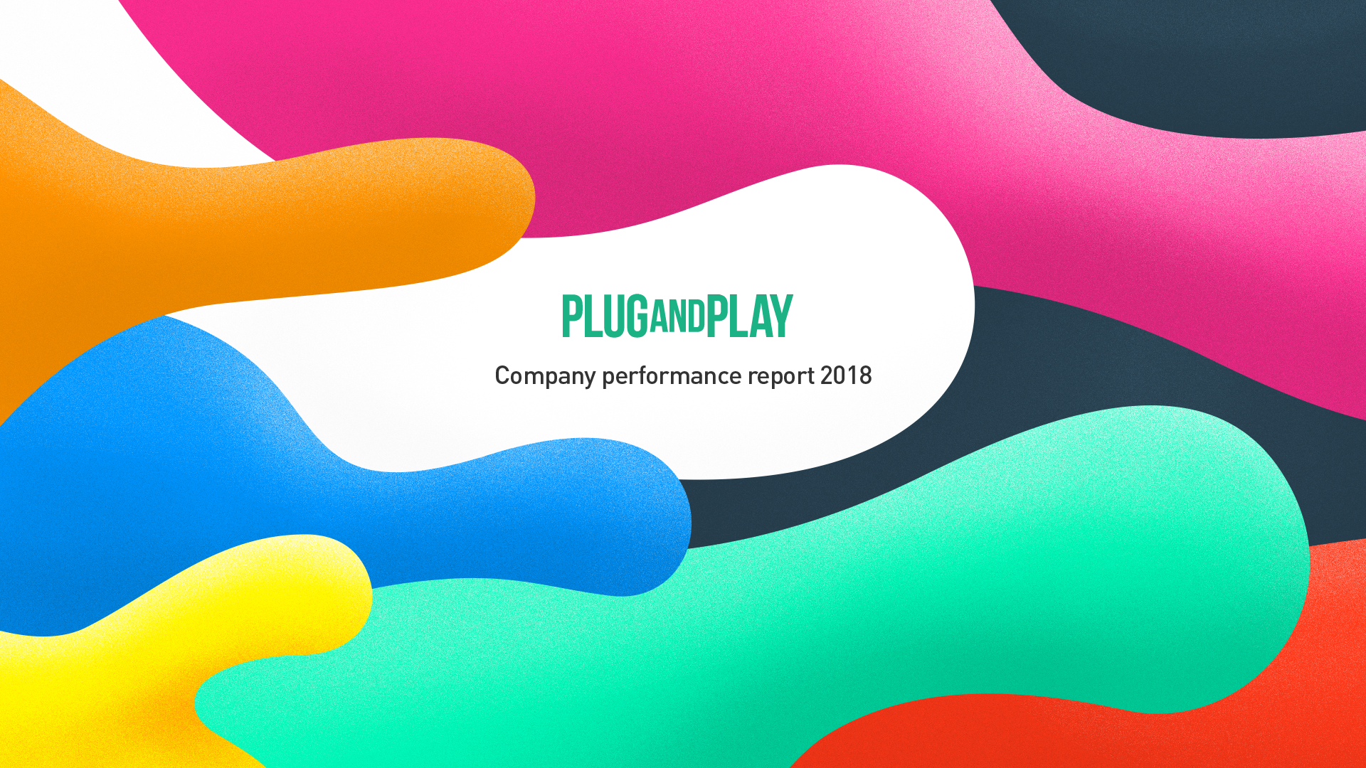 Plug and Play 2018 company report