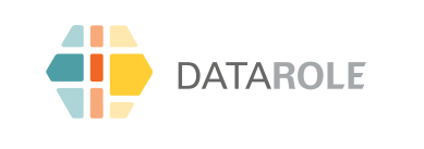 DataRole Logo