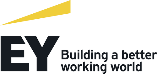 EY Parthenon - Plug and Play