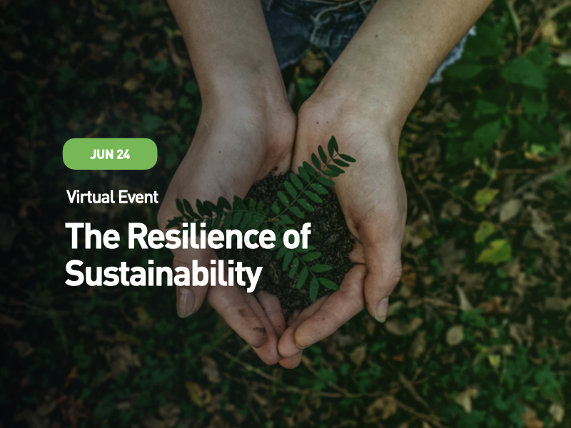 The Resilience of Sustainability