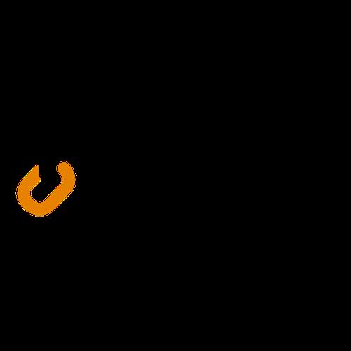 Flowlity Logo
