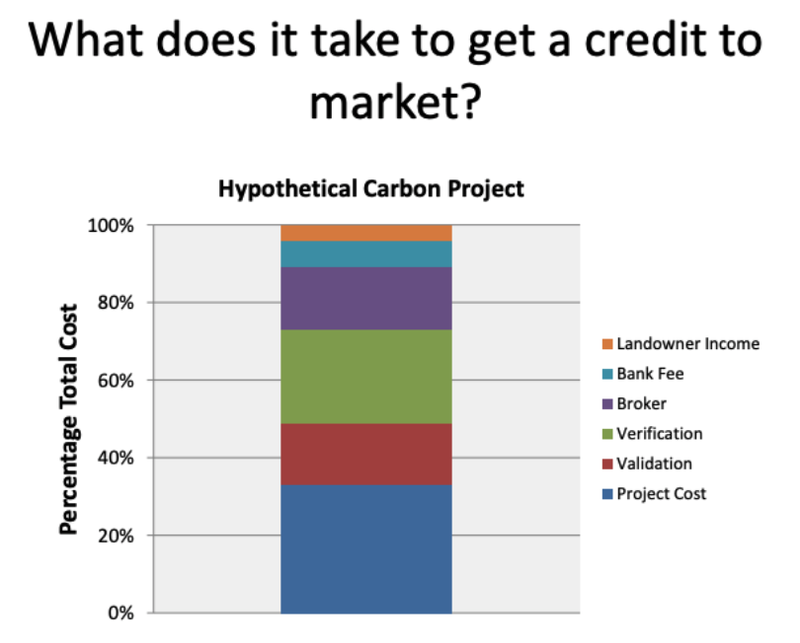 The Future of Carbon Offset Marketplaces: Opportunities and Key Drivers