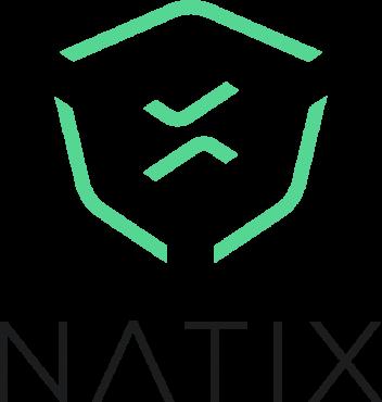 Natix Logo