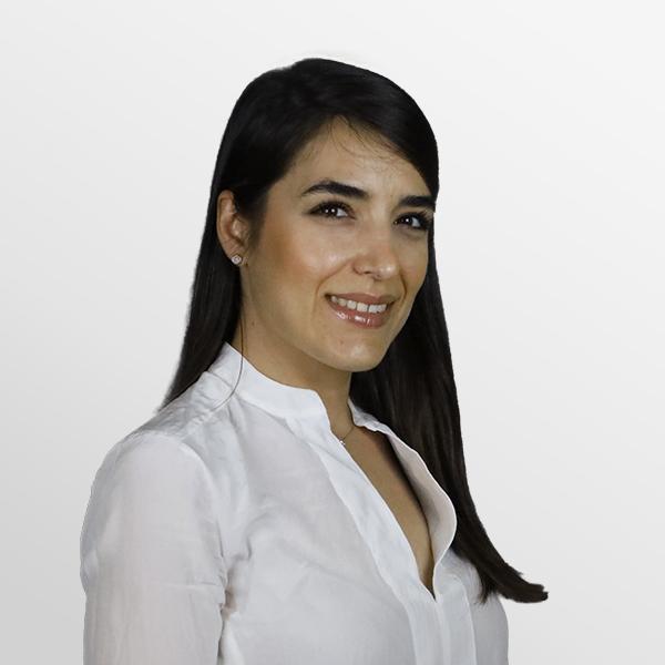 Roza Amrollah - Plug and Play