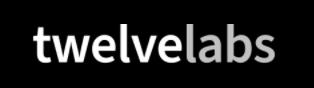 Twelve Labs Logo
