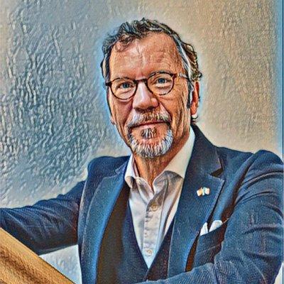 Global Executive Advisor, Volkswagen AG