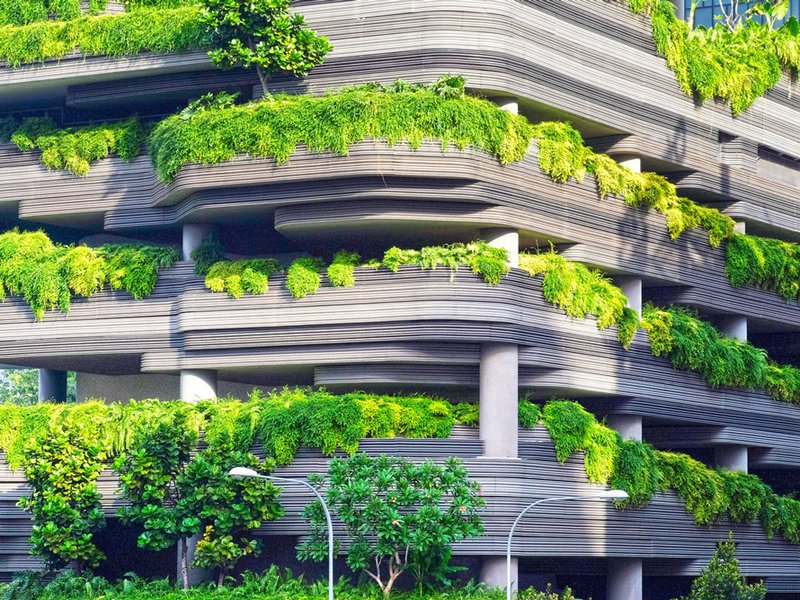 Taking the LEED in Sustainability