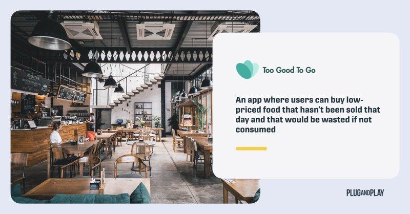 food-waste-in-hospitality-startups.008.jpeg