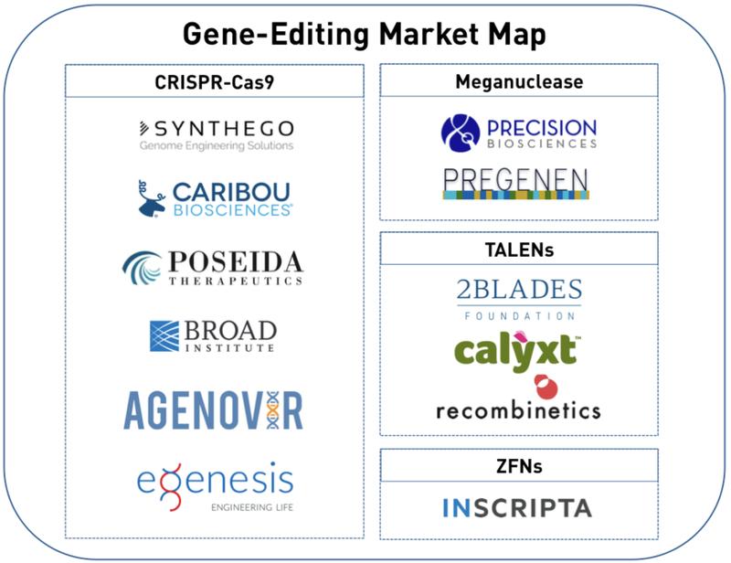 gene editing market map