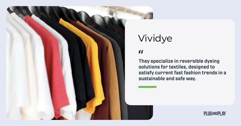 innovation-sustainable-fashion-startups-Vividye.001.jpeg