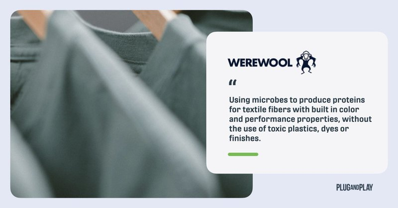 innovation-sustainable-fashion-startups-werewool.001.jpeg