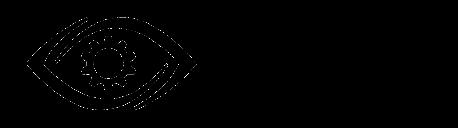 mVizn Logo