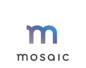 SayMosaic Logo