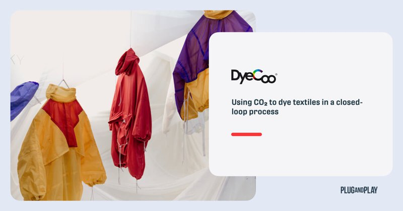 sustainable-dyeing-startups-dyeco.001.jpeg