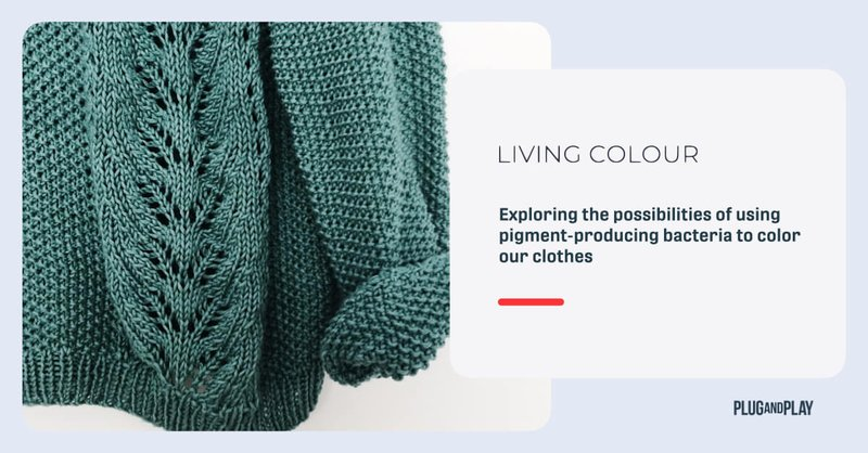 sustainable-dyeing-startups-living-color.001.jpeg