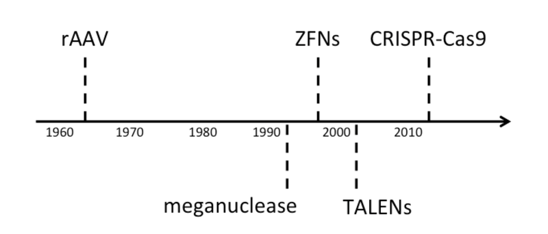 timeline gene editing techniques