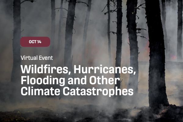 wildfires, hurricanes and climate catastrophes