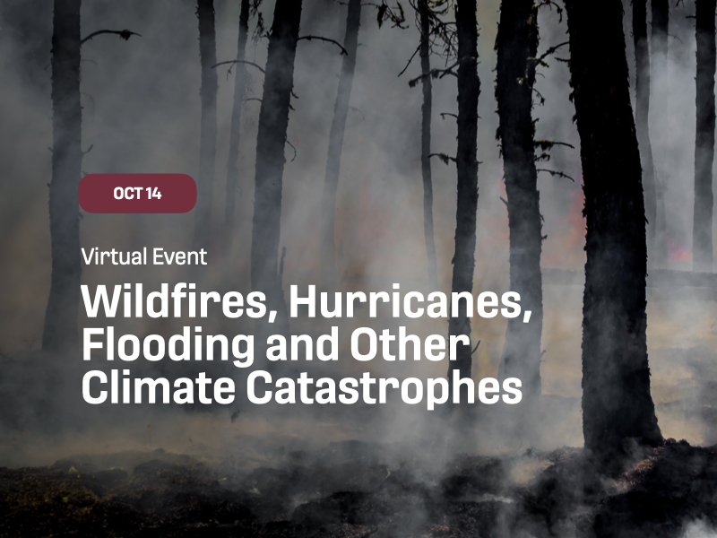 Wildfires, Hurricanes, Flooding, and Other Climate Catastrophes